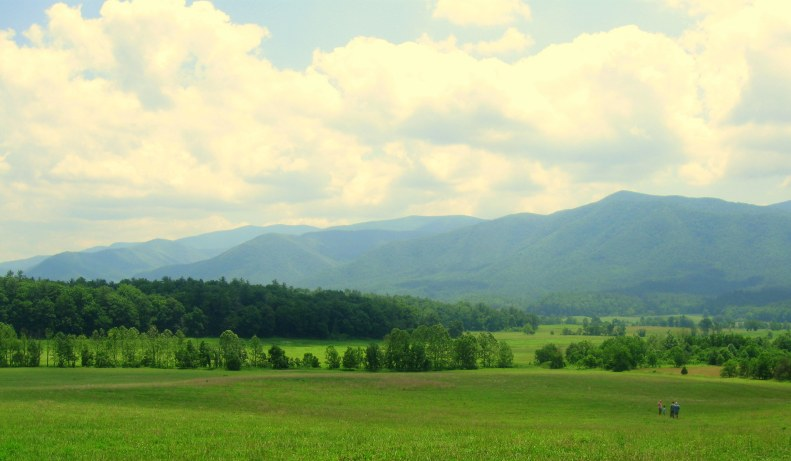 The View From Cade's Cove